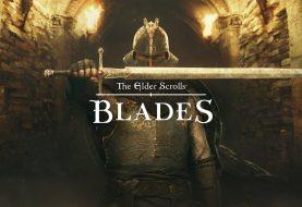 Nintendo Switch + TES: Blades = Perfection