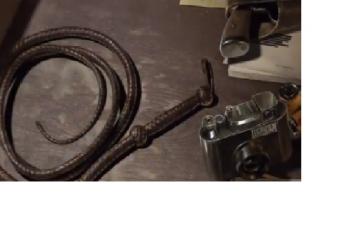 Indiana Jones Coming from Todd Howard